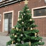 Weihnachtsbaum mit Kugeln und Stern